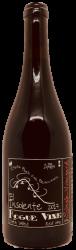 Rogue Vine - Insolente 2017
