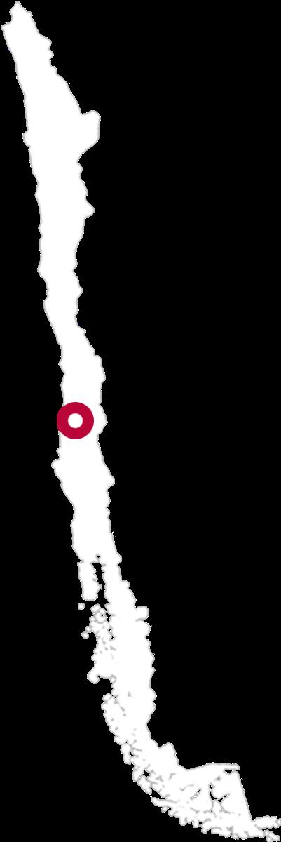 Pisco Bauza Karte
