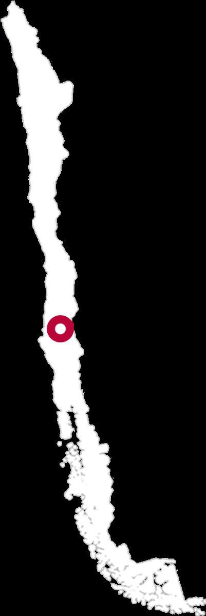 Koyle Karte